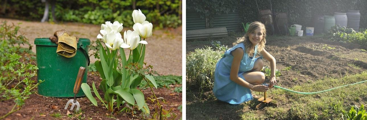 Mały ogródek - pomysły na urządzenie