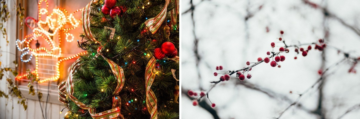 świąteczne dekoracje w ogrodzie dają widowiskowy efekt
