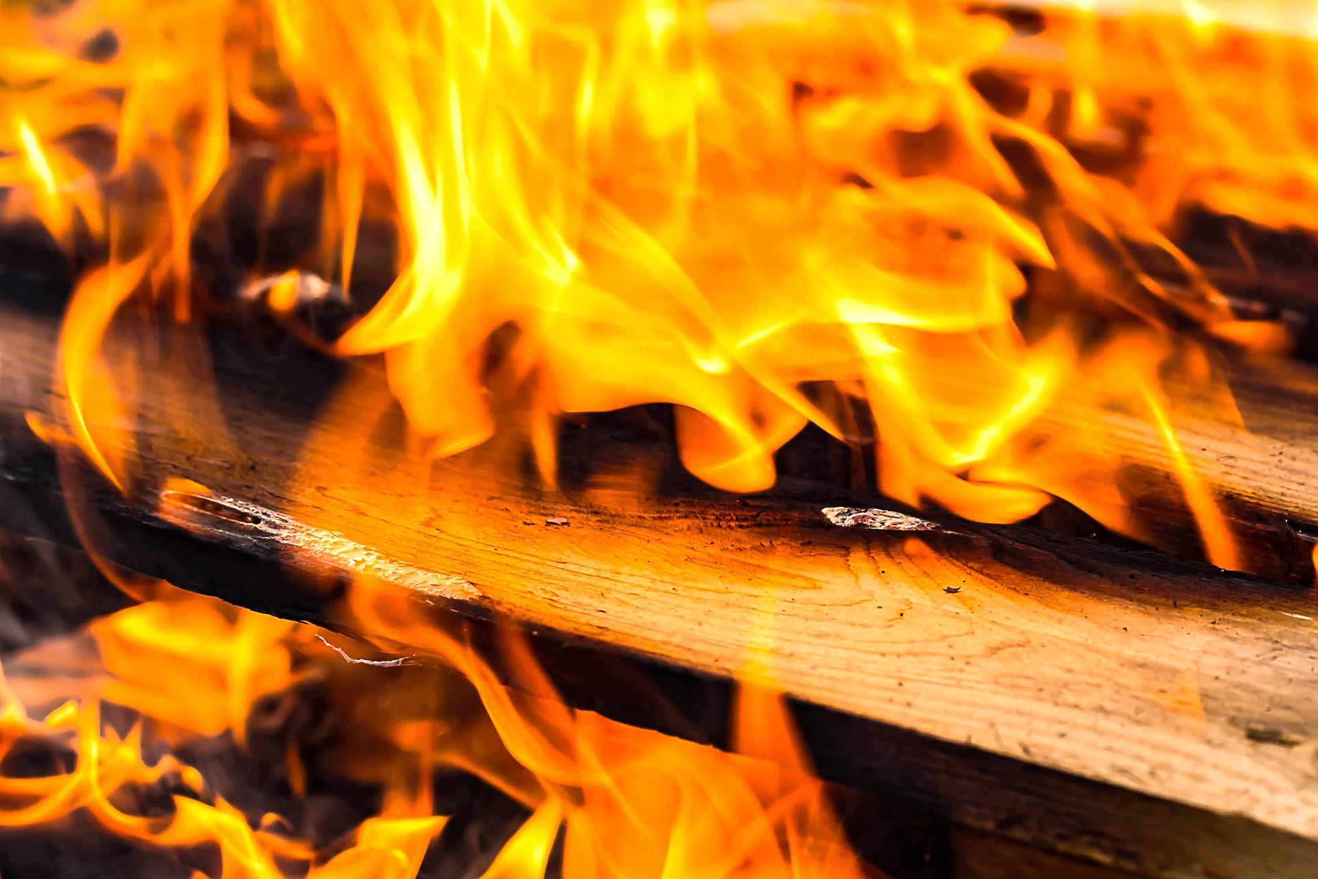 Palenie mokrym drewnem – pozorna oszczędność