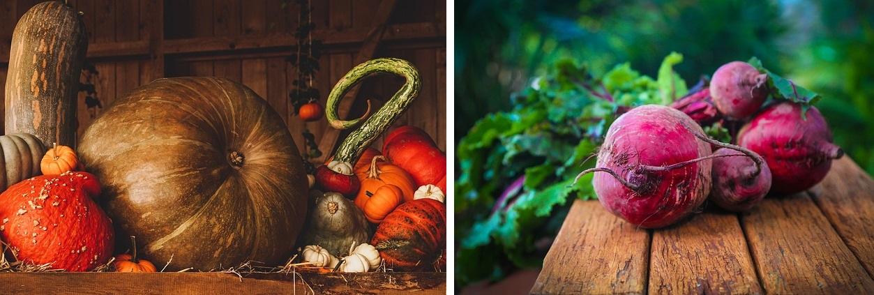 Warzywa jesienne