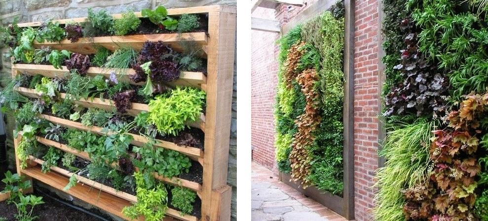 Zaaranżuj zieloną ścianę