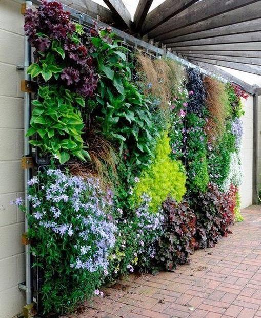Ogrody pionowe - naturalna dekoracja mieszkania