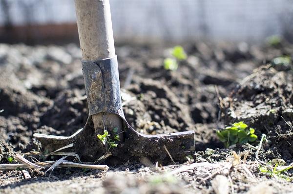 Prace ogrodowe