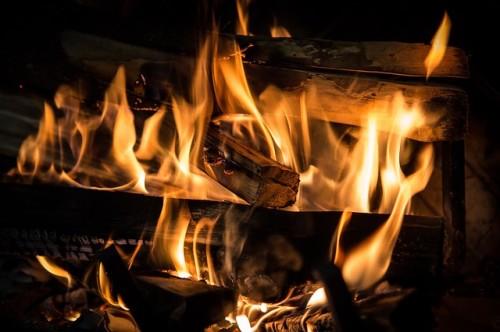 Jakie drewno najlepiej sprawdza się jako opał do kominka?