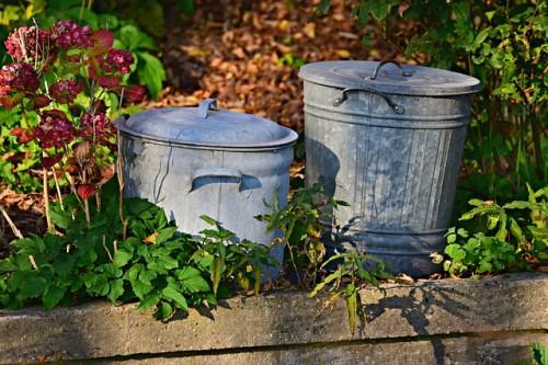 Porządki w ogrodzie - bądź eko!