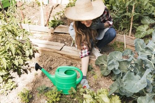 Wiosenne owoce i warzywa w Twoim ogródku